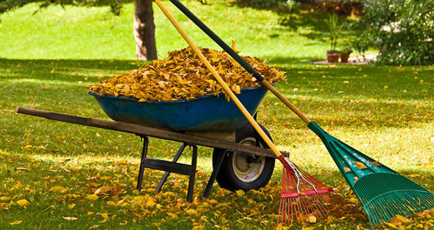 Our fall clean-up service is the process of removing all leaves, branches  and other debris that have accumulated over the course of the summer season. - Spring & Fall Cleanup Rick Botti Landscaping, Inc.